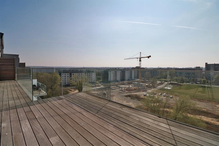 Immobilier Bruxelles - Belgique - Lecobel Vaneau – 1